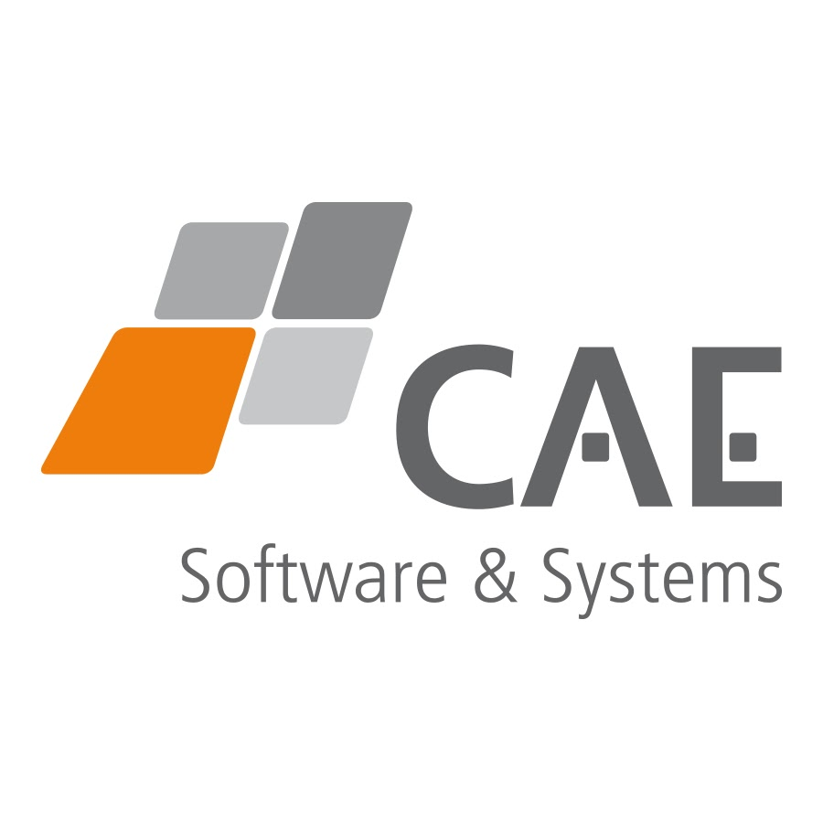 CAE Software & Systems